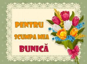 card_postal_cu_ceai_019