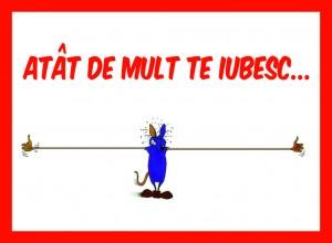 card_postal_cu_ceai_026