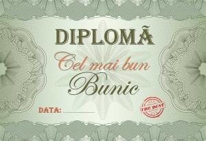 diploma_002
