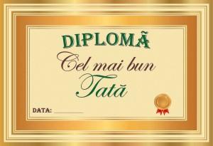 diploma_004