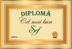 diploma_007