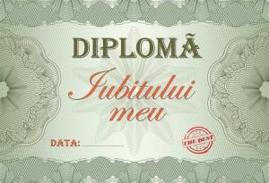 diploma_008