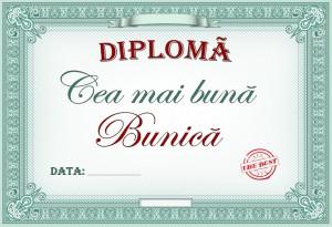 diploma_010