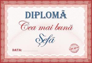 diploma_012