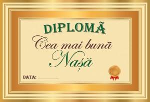 diploma_013
