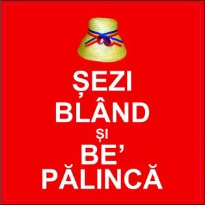 plosca_personalizata_008