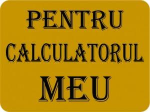 pusculita_lingou_de_aur_009