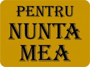 pusculita_lingou_de_aur_010
